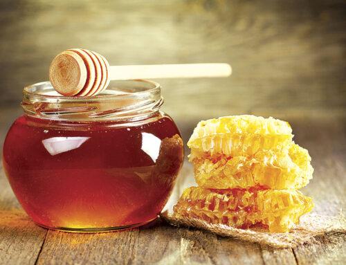 Μέλι το Θυμαρίσιο